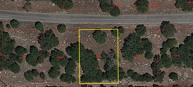 Lot 14165 South Wind, Horseshoe Bay, TX 78657 (#152221) :: Zina & Co. Real Estate