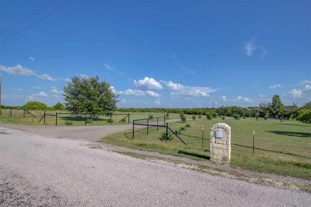 251 Olive Branch Road, Bertram, TX 78605 (#152256) :: Zina & Co. Real Estate