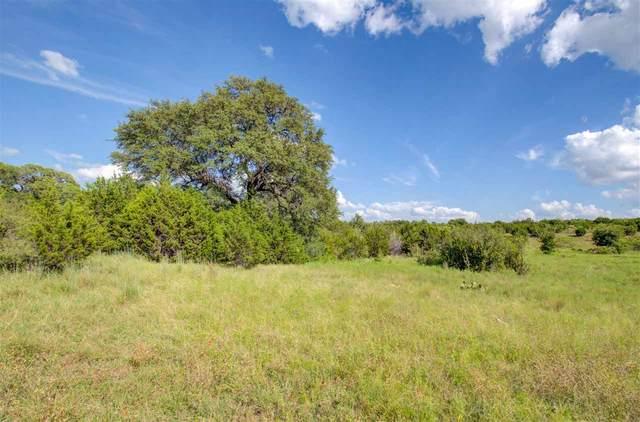 253 Olive Branch Rd, Bertram, TX 78605 (#152295) :: Zina & Co. Real Estate