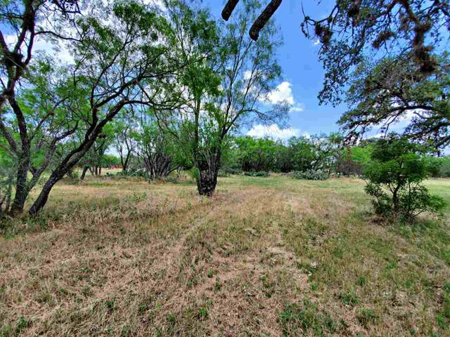 TBD Naumann Drive, Granite Shoals, TX 78654 (#152357) :: Zina & Co. Real Estate
