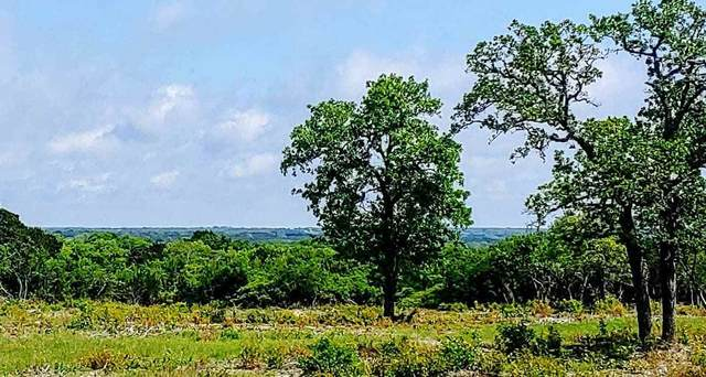 000 Cr 250 Road, Burnet, TX 78611 (#152366) :: Zina & Co. Real Estate