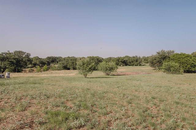 Lot 15 River Park Drive, Kingsland, TX 78639 (#152794) :: Realty Executives - Town & Country