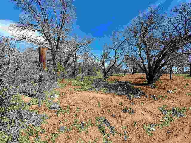 TBD Lots 46-48 Drake Street, Kingsland, TX 78639 (#152971) :: Zina & Co. Real Estate