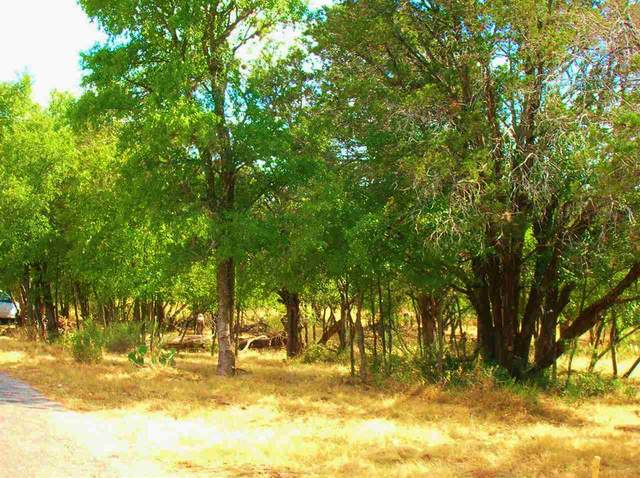 8 Lots Birch Lane, Cottonwood Shores, TX 78657 (#152987) :: Realty Executives - Town & Country