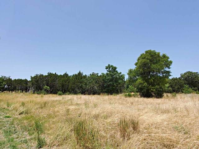 TBD Lot 14 Parkview Dr, Marble Falls, TX 78654 (#153022) :: Zina & Co. Real Estate