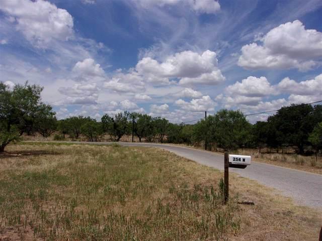254 Flag Creek Ranch Road W, Llano, TX 78643 (#153027) :: Zina & Co. Real Estate