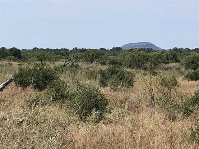 00 County Road 106, Llano, TX 78643 (#153127) :: Zina & Co. Real Estate
