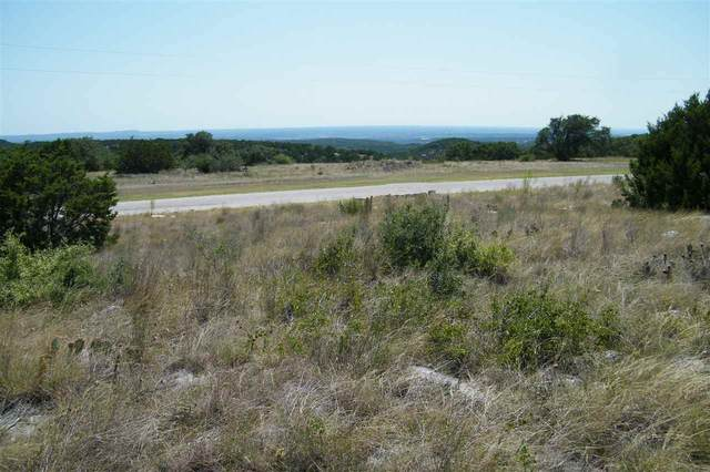 157 Sierra Drive, Bertram, TX 78605 (#153155) :: Realty Executives - Town & Country