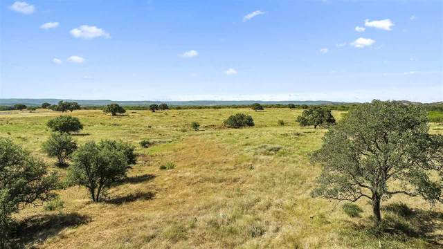 00 Rr3347, Round Mountain, TX 78663 (#153297) :: Realty Executives - Town & Country