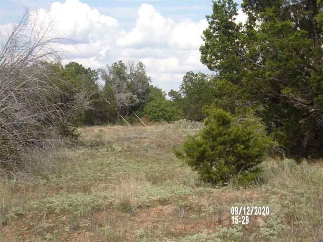 lt 1002 Pristine Pass Tx, Buchanan Dam, TX 78609 (#153575) :: Zina & Co. Real Estate
