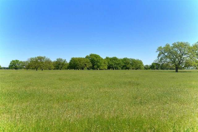 TBD Fm 1030, San Saba, TX 76877 (#153594) :: Zina & Co. Real Estate
