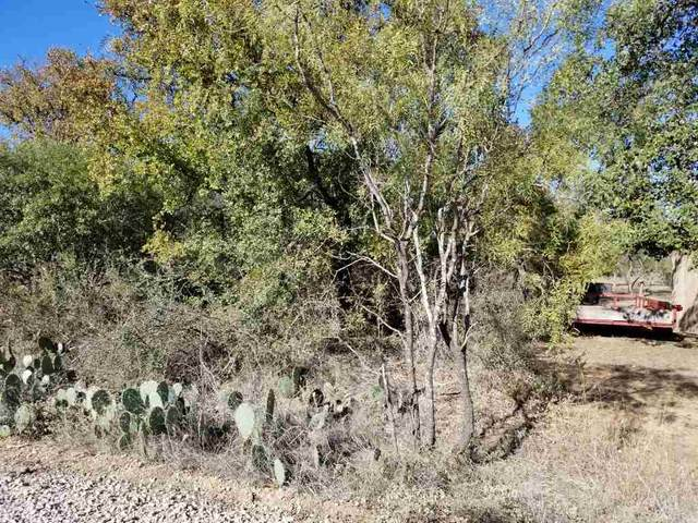 lot 116 Hill Wood, Granite Shoals, TX 78654 (#154101) :: Realty Executives - Town & Country