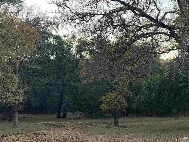 247 Jackson Road, Marble Falls, TX 78654 (#154102) :: Zina & Co. Real Estate