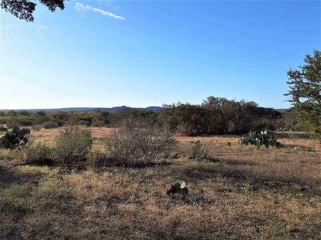 6915 Cr 216, Llano, TX 78643 (#154226) :: Realty Executives - Town & Country