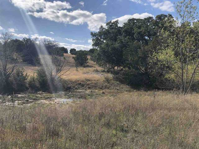 00 Cr 281, Out of Area, TX 76457 (#154279) :: Realty Executives - Town & Country
