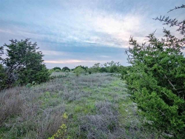 Lot 65 Three Creeks Dr, Bertram, TX 78605 (#154358) :: Realty Executives - Town & Country