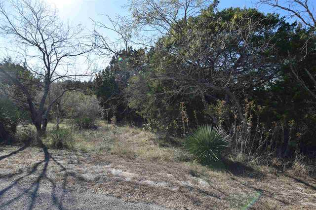 000 Cove Creek Drive, Spicewood, TX 78669 (#154418) :: Realty Executives - Town & Country
