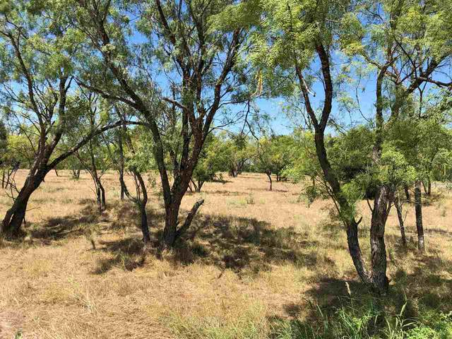 100 Little Bit, Horseshoe Bay, TX 78657 (#154601) :: Realty Executives - Town & Country