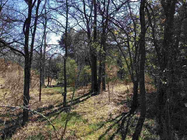 Lot 262,263,264 Elm Creek Drive, Granite Shoals, TX 78654 (#154619) :: Realty Executives - Town & Country