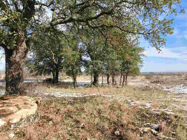 000 Shooting Star, Lometa, TX 76853 (#154633) :: Zina & Co. Real Estate