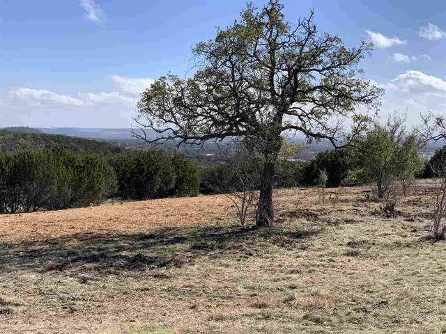 Lot 78 Big Sky, Burnet, TX 78611 (MLS #154690) :: The Curtis Team