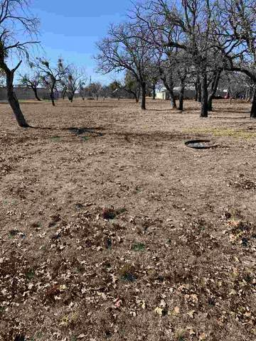 TBD 22 Greenwood Acres, Buchanan Dam, TX 78609 (#154692) :: Zina & Co. Real Estate