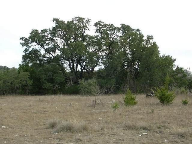 000 Olive Branch Rd. Street N, Bertram, TX 78605 (MLS #155677) :: The Curtis Team