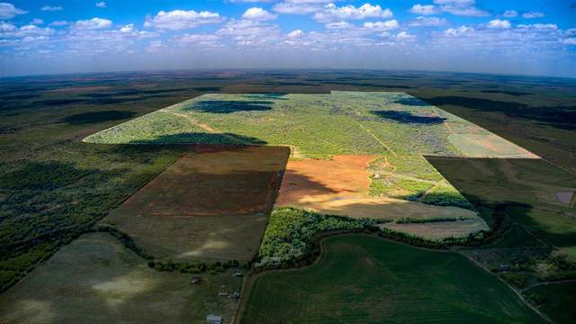 TBD Cr 121, Out of Area, TX 79561 (#155993) :: Zina & Co. Real Estate