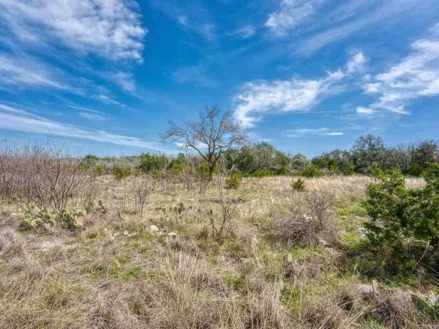 TBD 0 Crown Lane, Burnet, TX 78611 (#156066) :: Zina & Co. Real Estate