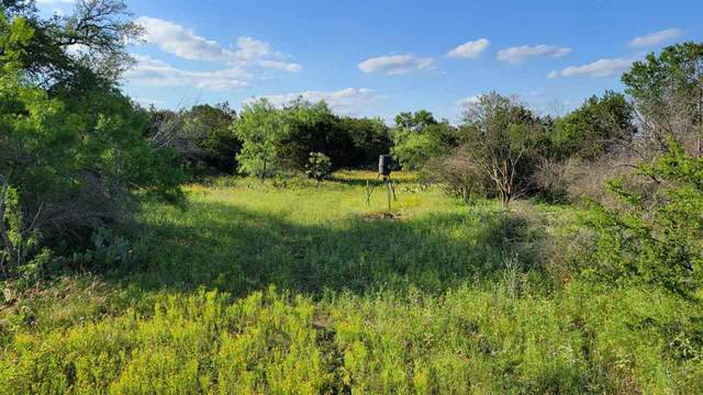 1790 Cr 402, Marble Falls, TX 78654 (MLS #156071) :: The Lugo Group