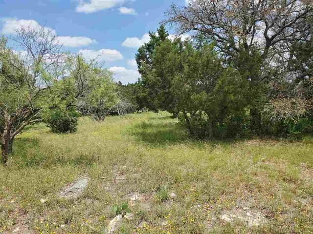 Lot K1080 White Tail, Horseshoe Bay, TX 78657 (#156096) :: Zina & Co. Real Estate
