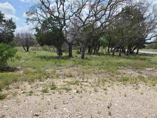 Lot K1110 Mountain Dew, Horseshoe Bay, TX 78657 (#156098) :: Zina & Co. Real Estate
