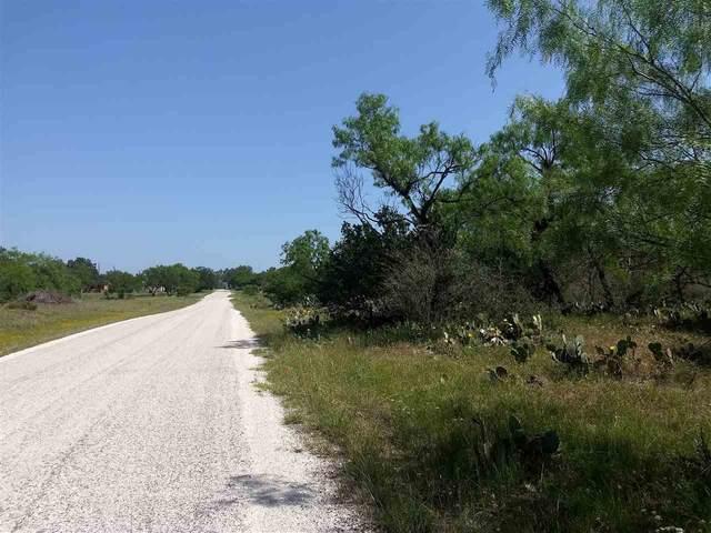 231-232 Cactus Trail, Kingsland, TX 78639 (#156248) :: Zina & Co. Real Estate