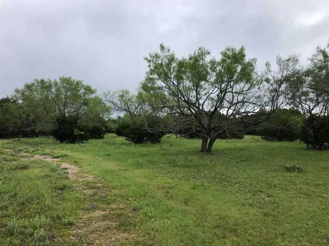 348.41 Acres Us Hwy 281, Lampasas, TX 76550 (#156376) :: Realty Executives - Town & Country