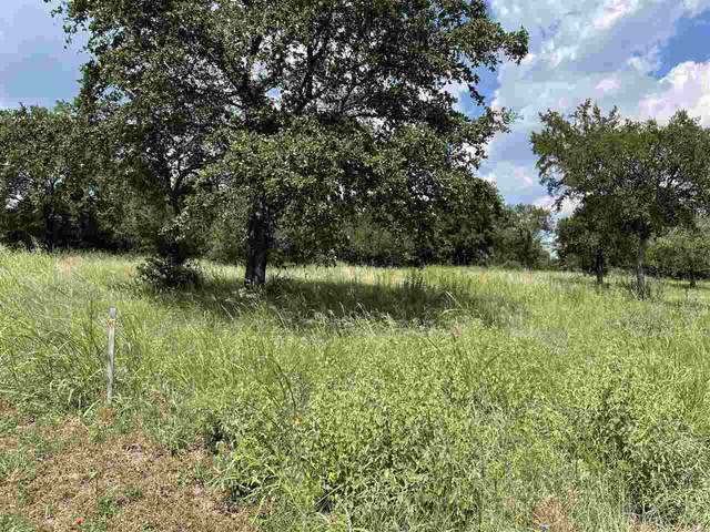 Lot 37 Claremont Parkway, Marble Falls, TX 78654 (#156535) :: Zina & Co. Real Estate