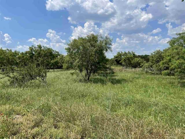 Lots 11 & 12 Johnson St, Marble Falls, TX 78654 (#156536) :: Zina & Co. Real Estate