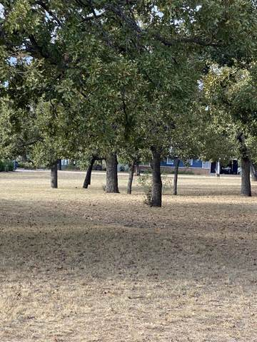 00 North Chaparral And Buckboard, Burnet, TX 78611 (MLS #157619) :: The Curtis Team