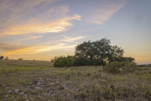 Lot 69 Three Creeks, Bertram, TX 78605 (MLS #157861) :: The Curtis Team
