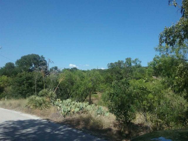 Lakeview Drive, Buchanan Dam, TX 78609 (#144761) :: The ZinaSells Group