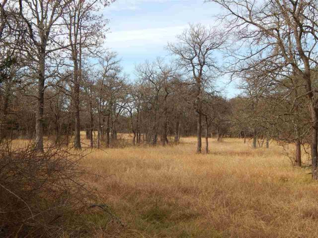 680 County Road 225, Out of Area, TX 76527 (#146786) :: Zina & Co. Real Estate