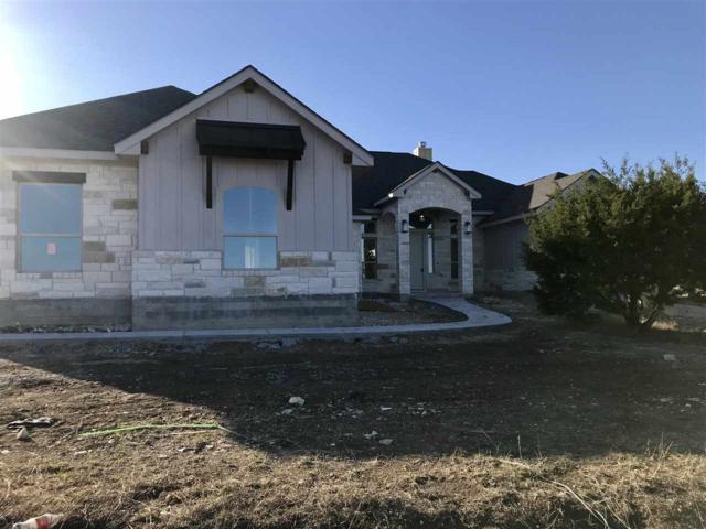 308 Joya Drive, Liberty Hill, TX 78642 (#146851) :: Zina & Co. Real Estate