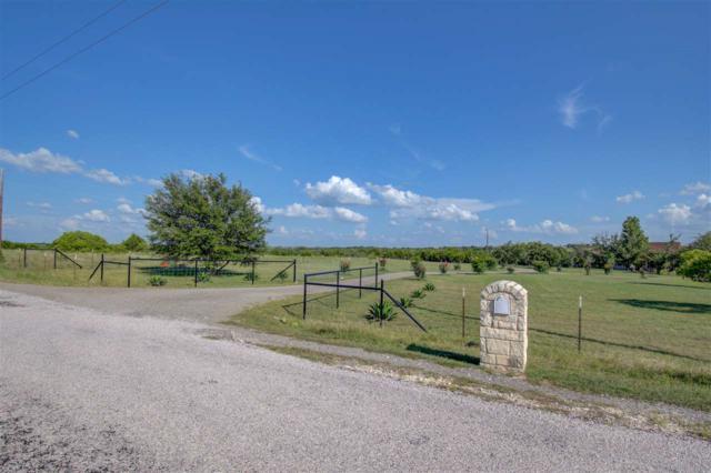 251 Olive Branch Road, Bertram, TX 78605 (#148842) :: Zina & Co. Real Estate