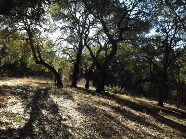 410 Lake View Drive, Spicewood, TX 78669 (#149823) :: Zina & Co. Real Estate