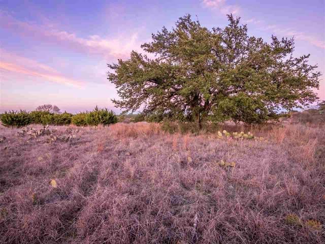 Lot 86 Three Creeks Drive, Bertram, TX 78605 (#150785) :: Realty Executives - Town & Country