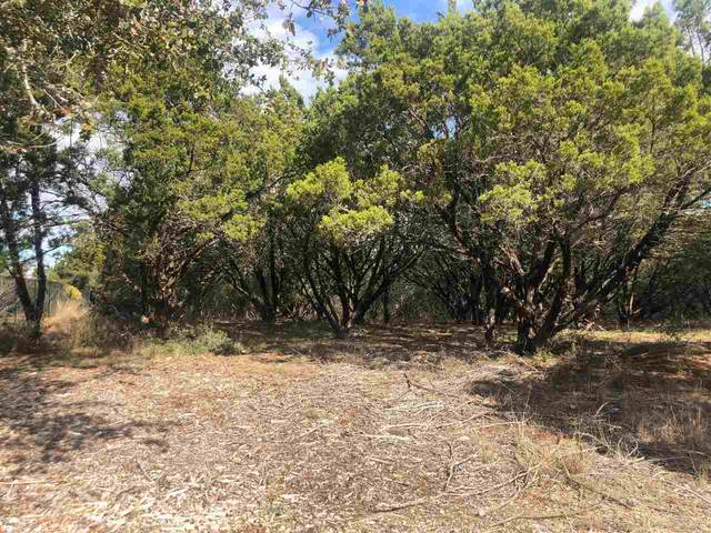 K12045 Brush Fire, Horseshoe Bay, TX 78657 (MLS #154688) :: The Curtis Team
