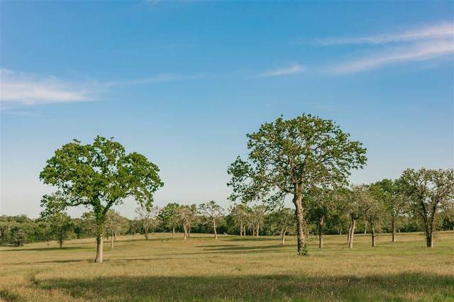 309 Peach Creek Road, Out of Area, TX 78953 (MLS #156039) :: The Lugo Group