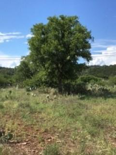 Lot 106 Front St., Burnet, TX 78611 (#140919) :: The ZinaSells Group