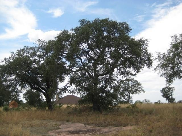 Lot 43 Keystone Ridge., Buchanan Dam, TX 78609 (#143499) :: The ZinaSells Group