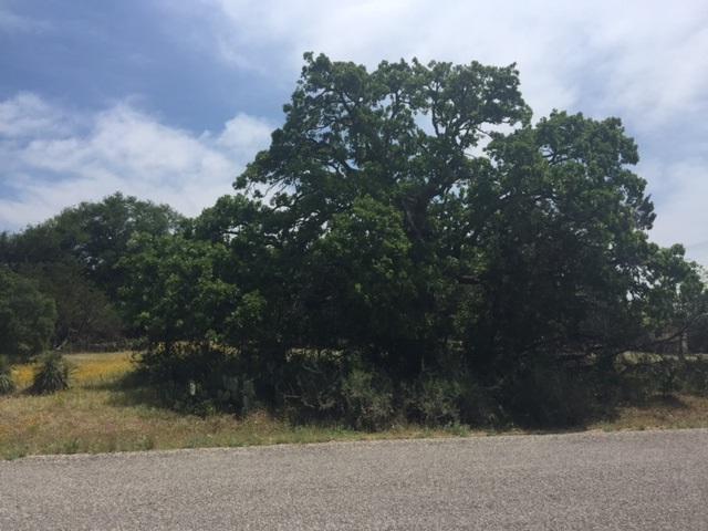 Lot 492 Cactus Trail, Kingsland, TX 78639 (#143837) :: The ZinaSells Group