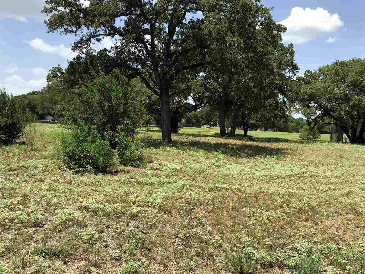 Lot 23119 Lost Spur - Photo 1